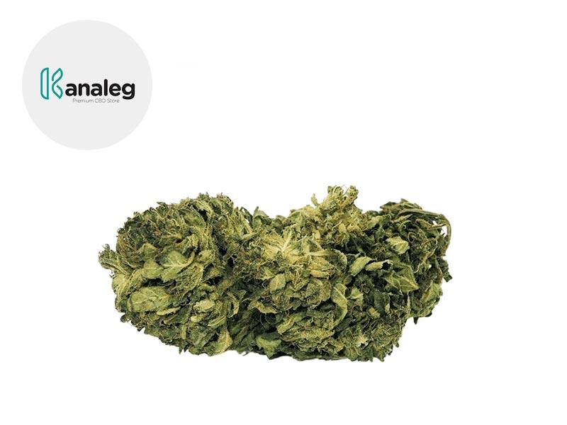 Fleur Amnesia Haze CBD Greenhouse 5% - Kanaleg