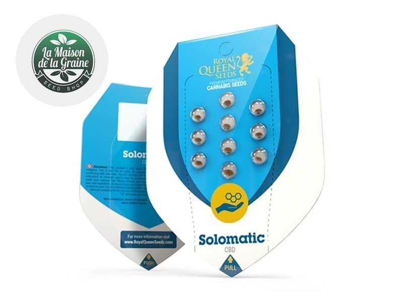 Graines CBD Solomatic autoflorissantes - La Maison De La Graine