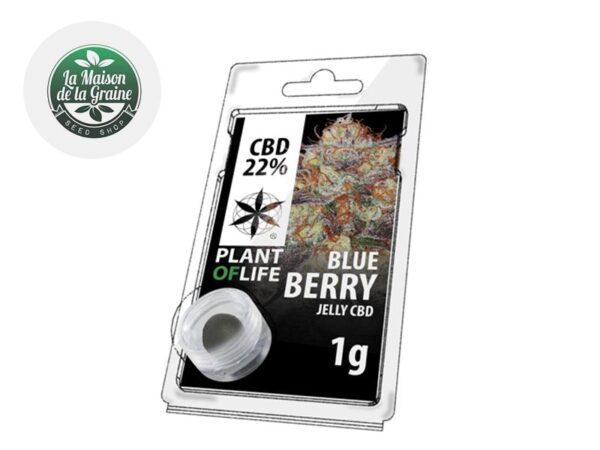 Résine BlueBerry CBD 22% - Plantoflife