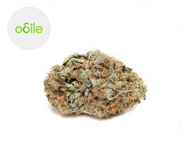 Fleur White Diamond Haze CBD Indoor 3.2% - Odile Green