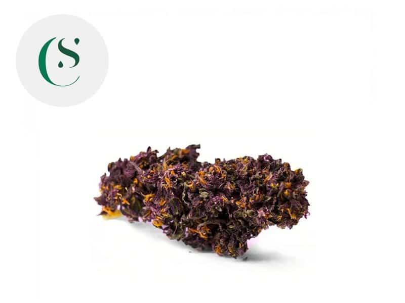 Fleur Deep Purple CBD Greenhouse 9% - Saveurs CBD