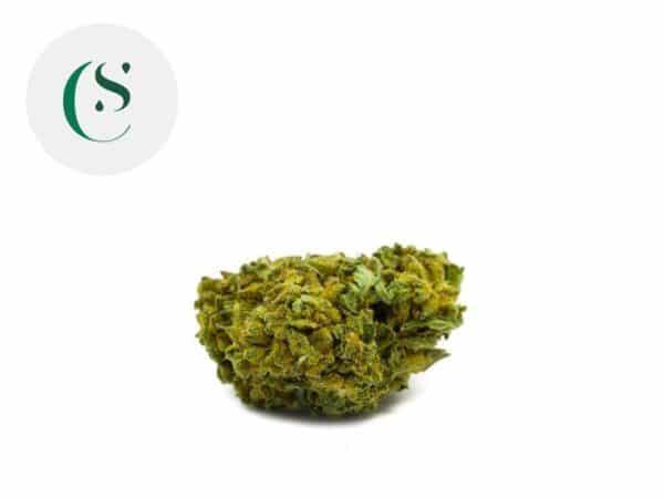 Fleur Ringo's Gift CBD Greenhouse 7% - Saveurs CBD