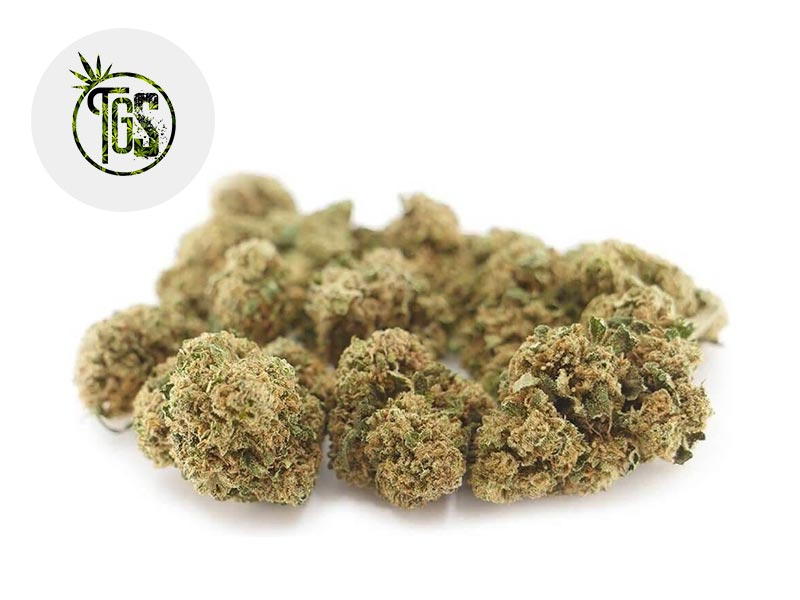 Fleur Gelato CBD Greenhouse 5% - The Green Store