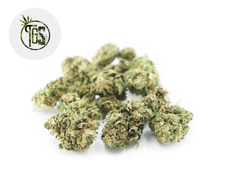 Fleur Bubba Kush CBD Outdoor 4% - The Green Store