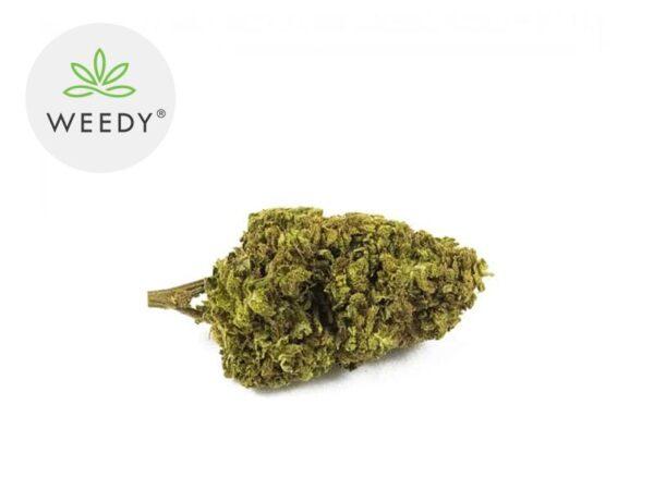 Fleur Remedy CBD Indoor 8% - Weedy