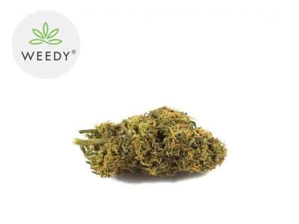 Fleur Caramel Candy CBD Indoor 7% - Weedy