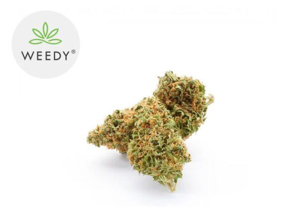 Fleur Super Silver Haze CBD Indoor 11% - Weedy