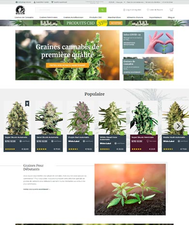 sensi seeds site