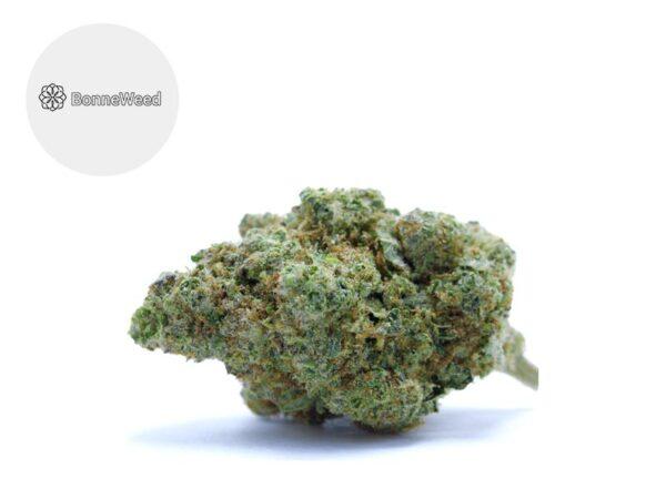 Fleur Blueberry CBD Indoor 20% - BonneWeed