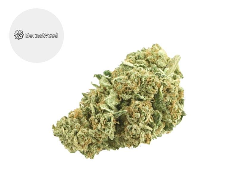 Fleur Amnesia CBD Indoor 19.5% - BonneWeed
